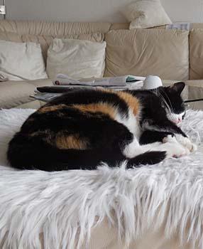 katja-z-sofaschlaf-dia